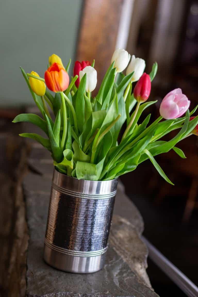tulip article 03